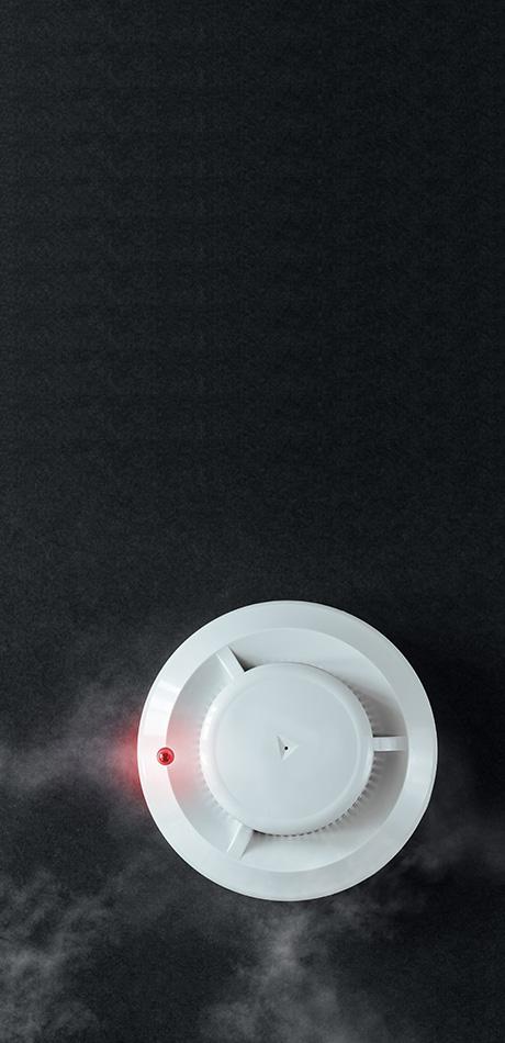 Rookdetectoren